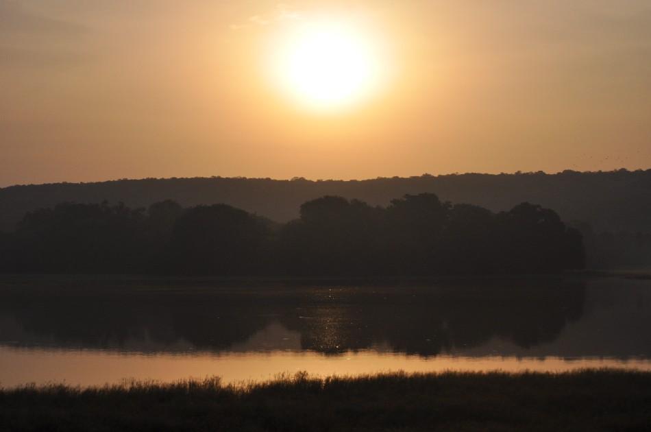 Sunrise in Ranthambore National Park